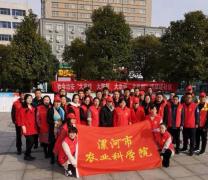 """漯河市农科院 社会治安""""大宣传、大防控、大走访、大化解"""" 宣传活动"""