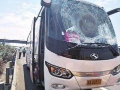 高速惊魂:轮胎向旅游大巴砸来 河南司机救下一车游客