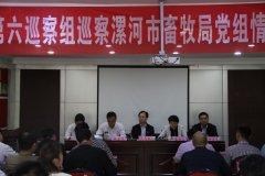 市委第六巡察组在市畜牧局召开巡察意见反馈会议