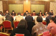 区长王凯杰参加区政协十四届委员会三次会议民主党派无党派界别组讨论