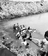 商丘一轿车翻入水塘五人被困 10余人跳入水中抬车