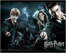 哈利波特:《黑暗与光明》中的顶级木匠