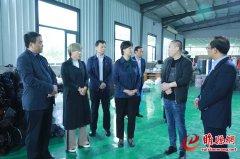 吴海燕到城郊河集潮庄河堤调研基层党建和主题教育工开展情况等工作