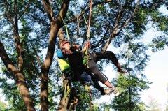 许昌学院开设攀树课程 学生通过考试后可作为新兴职业