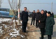 区委书记周新民带队督导春季造林绿化工作