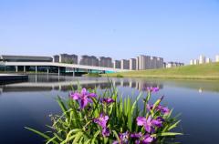 郑州航空港区新增绿地135万平方米 已建成游园25座