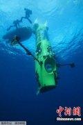 太平洋深海生物检出污染物 污染浓度远超地表河流