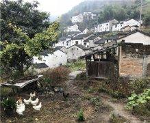 放空设计---在空心村里探索未来乡村发展的方向