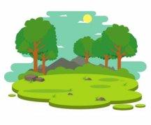 新乡获批建84万多亩国储林基地