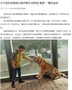 贵州野生动物园回应虐虎:饲养员与幼虎嬉戏