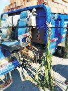 联通公司网线坠落拦路 行人凌晨撞上被勒身亡