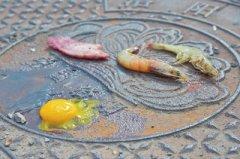 """河南持续高温开启""""烤肉模式""""!烈日下20分钟烤熟鸡蛋和大虾"""