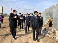 副市长、县委书记张宏义带队调研农业农村、脱贫攻坚工作