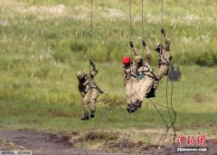 日本拟无偿对外提供自卫队二手装备 促防卫合作