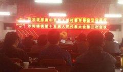 沙河铺镇胜利召开第十五届人民代表大会第三次会议