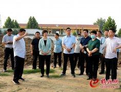 吴海燕到河集调研集镇区和美丽乡村建设工作