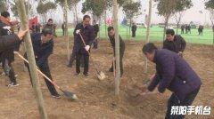 市领导参加全民义务植树活动