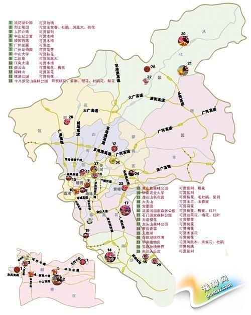 广州赏花地图来了 54个赏花景点让人一目了然